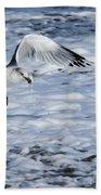 Ring-billed Gull Beach Towel
