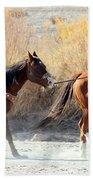 Rio Grande Cowboy Beach Towel