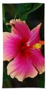Rise And Shine - Hibiscus Face Beach Towel by Connie Fox