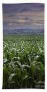 Rise To Meet The Day Beach Towel