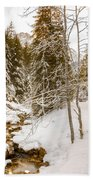 River And Path Beach Towel