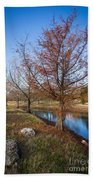 River And Winter Trees Beach Towel
