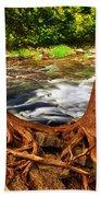 River Beach Towel by Elena Elisseeva