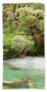 River In Rainforest Wilderness Of Fiordland Np Nz Beach Towel