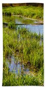 River Kennet Marshes Beach Towel