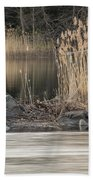 River Rock And Reeds Beach Towel