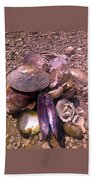River Shells Beach Towel