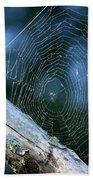 River Spider Web   Beach Towel