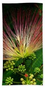 River Wildflowers Beach Towel