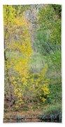 Riverbank Colors Beach Towel