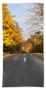 Road In Autumn Forest Beach Towel
