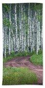 Road Through A Birch Tree Grove Beach Towel