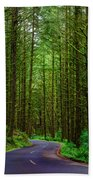 Road Through The Woods Beach Towel