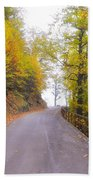 Road With Autumn Trees Beach Towel