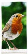 Robin Bird Photograph Beach Towel