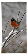 Robin In Winter Beach Towel