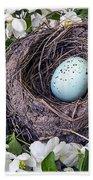 Robin's Nest Beach Sheet