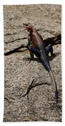 Rock Island Lizard   #8103 Beach Towel