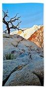 Rocks In Sun And Shade Along Barker Dam Trail In Joshua Tree Np-ca- Beach Towel
