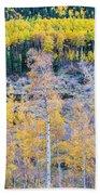 Rocky Mountain Autumn Contrast Beach Towel