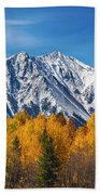 Rocky Mountain Autumn High Beach Towel by James BO  Insogna