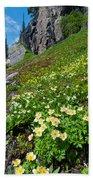 Rocky Mountain Summer Landscape Beach Towel