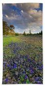 Rocky Prairie Cloud Explosion Beach Towel