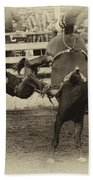Rodeo Learning To Fly Beach Towel