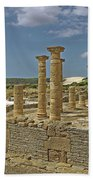Roman Ruins Of Baelo Claudia Beach Towel