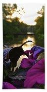 Romantic River View Beach Towel