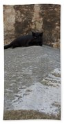 Rome Cat Beach Towel