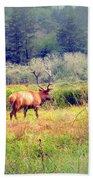Roosevelt Bull Elk Beach Towel