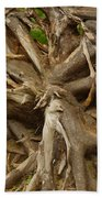 Root System Beach Towel