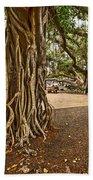 Roots - Banyan Tree Park In Maui Beach Towel