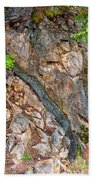 Roots And Rocks Beach Towel