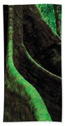 Roots Of A Giant Tree, Daintree Beach Towel