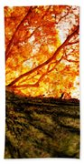 Roots To Branches IIi Beach Towel