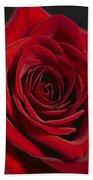 Rose 11 Beach Towel