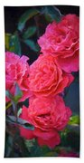 Rose 138 Beach Towel