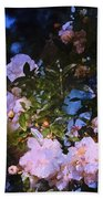 Rose 222 Beach Towel