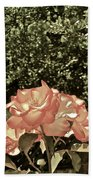 Rose 55 Beach Towel