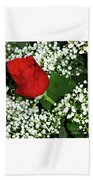 Rose And Baby's Breath Beach Towel