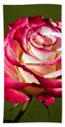 Rose Dick Clark Beach Towel