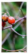 Rose Hip Wet Beach Towel