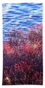 Rose Hips By The Seashore Beach Towel