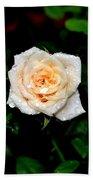 Rose In The Rain Beach Towel