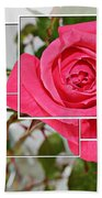 Rose Montage Beach Towel