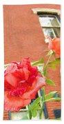 Rose On Brownstone Beach Towel