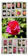 Roses Collage 2 - Painted Beach Towel