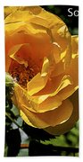 Roses Have Thorns Beach Towel
